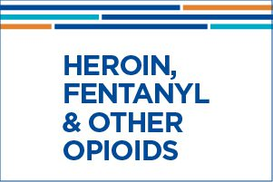 Heroin, Fentanyl & Other Opioids eBook